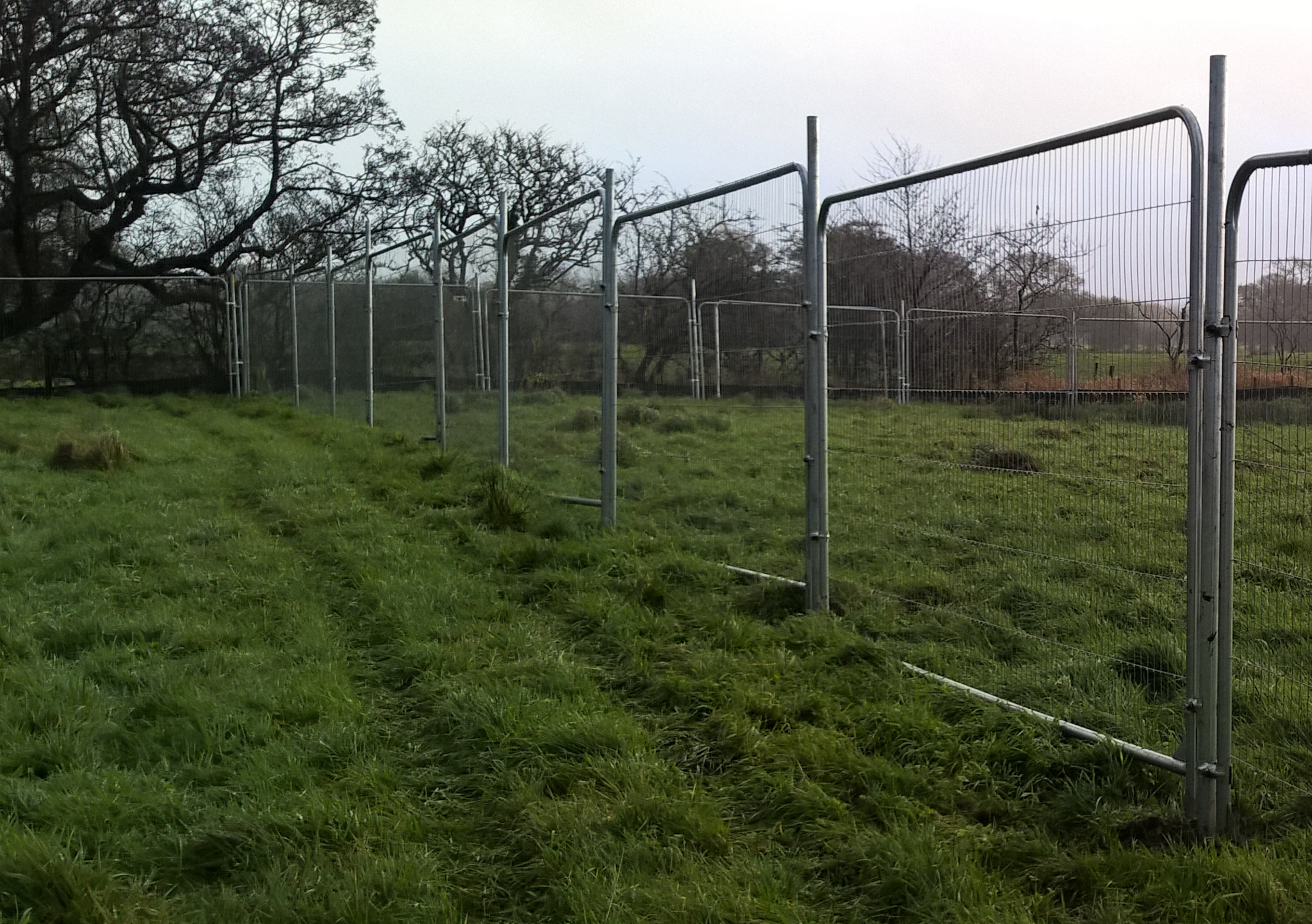 In Ground Fencing
